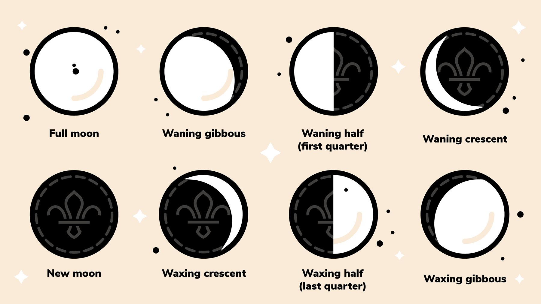 The eight key phases of the Moon created using sandwich biscuits.