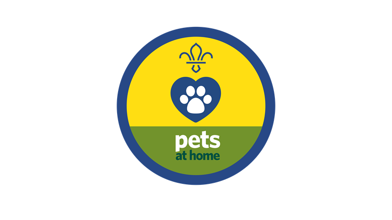 Animal Friends Activities Scouts