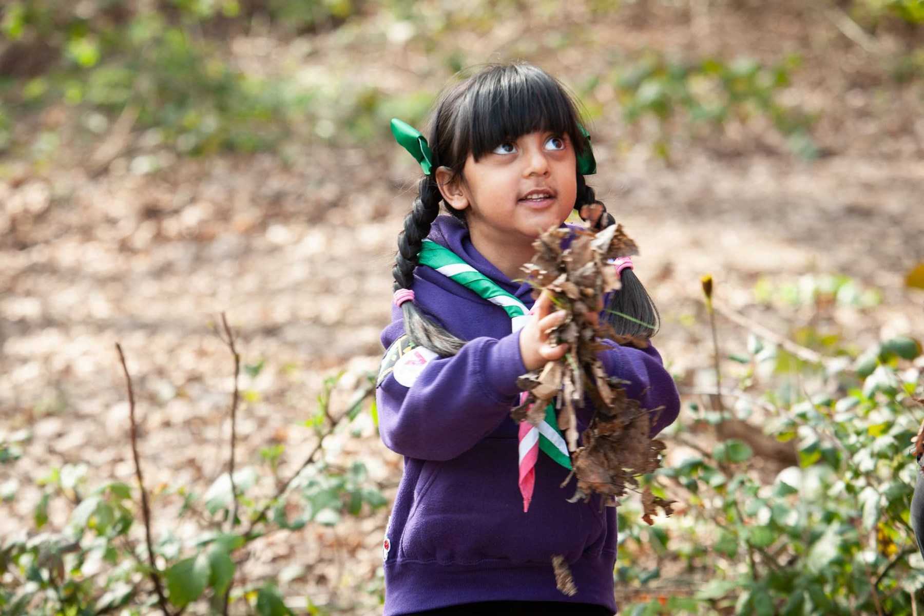 Young scout gathering leaves, as part of the Early Years pilot.